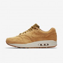 Nike Air Max 1 Premium Marrone/Light Bone/Gum Medio Marrone Uomo Scarpe da corsa 875844-701