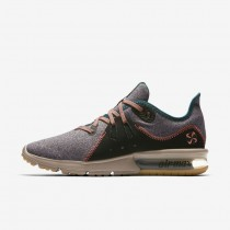 Donna Scarpe Nike Air Max Sequent 3 Premium V Grigio Petrolio/Diffused Taupe/Rainforest/Mango Brillante AR0255-001